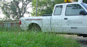 City truck and grass