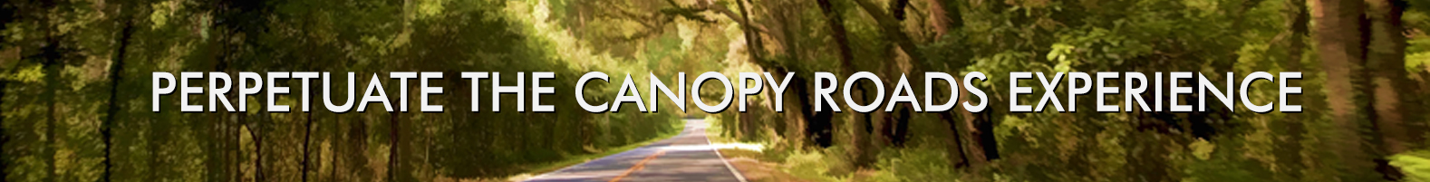 Canopy Roads Management Plan Goals