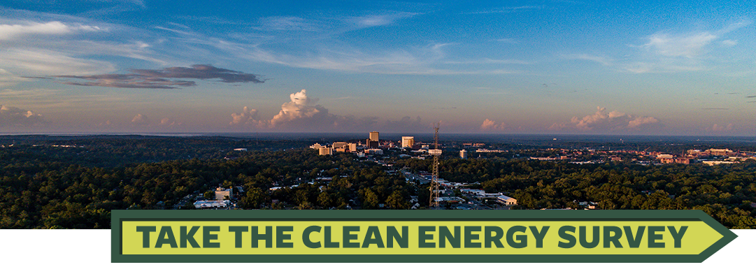 Take the Clean energy Survey