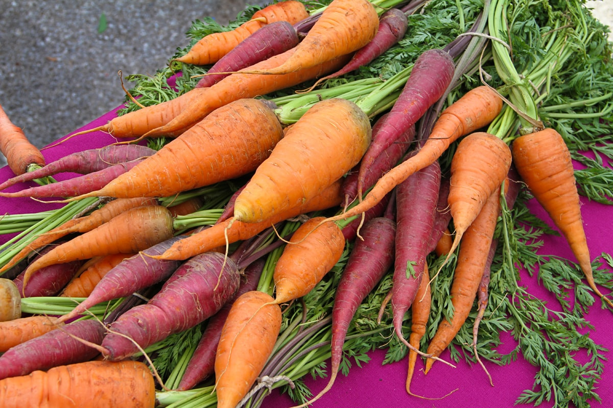 A variety of colorful carrots.
